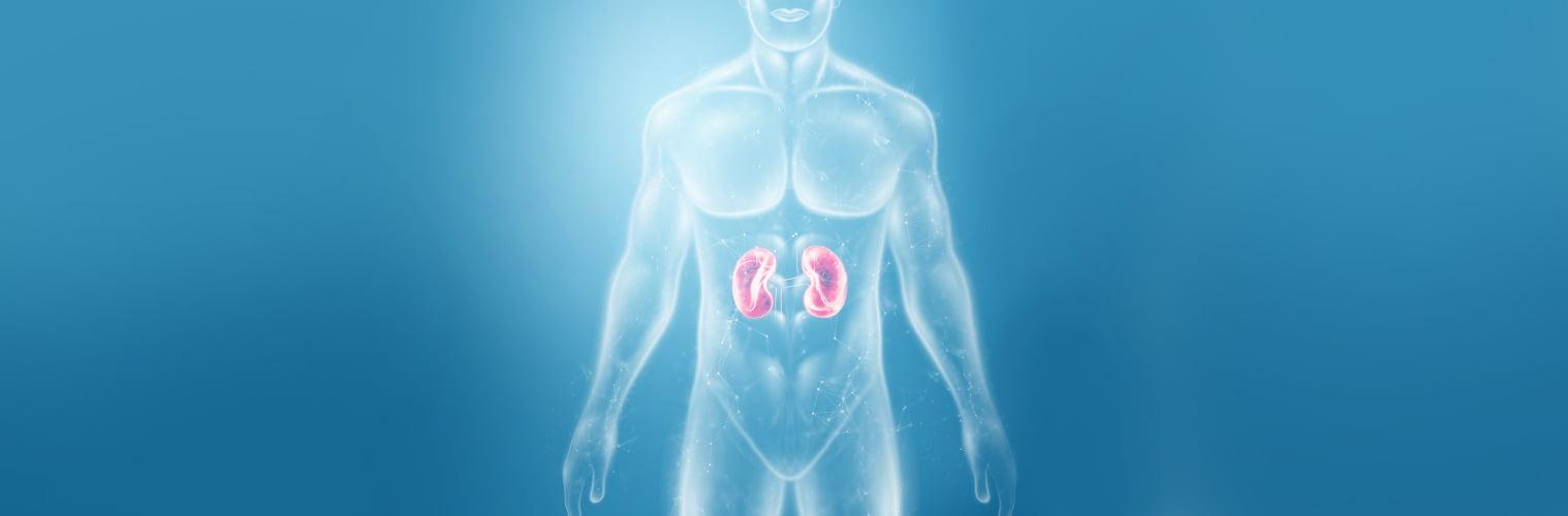 Kidney Cancer - VishwaRaj Hospital